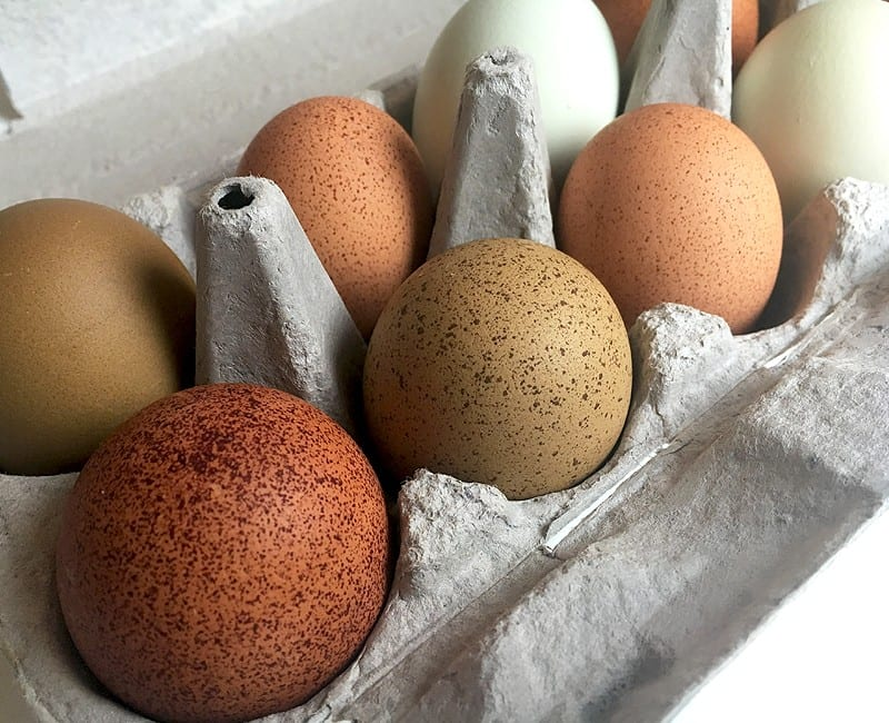 easy to peel hard boiled farm fresh eggs #eggs