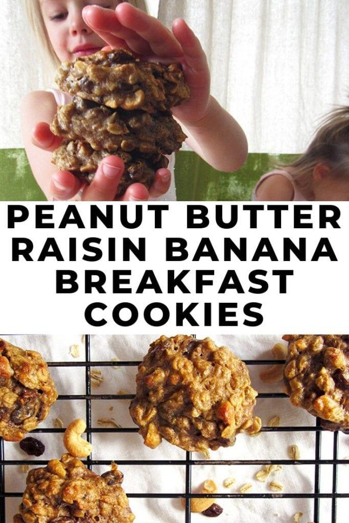 Peanut Butter Raisin Banana Breakfast Cookies