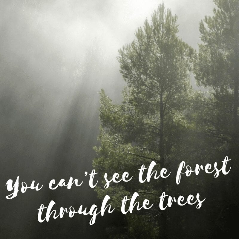 You can't see the forest through the trees || post partum depression has its own story