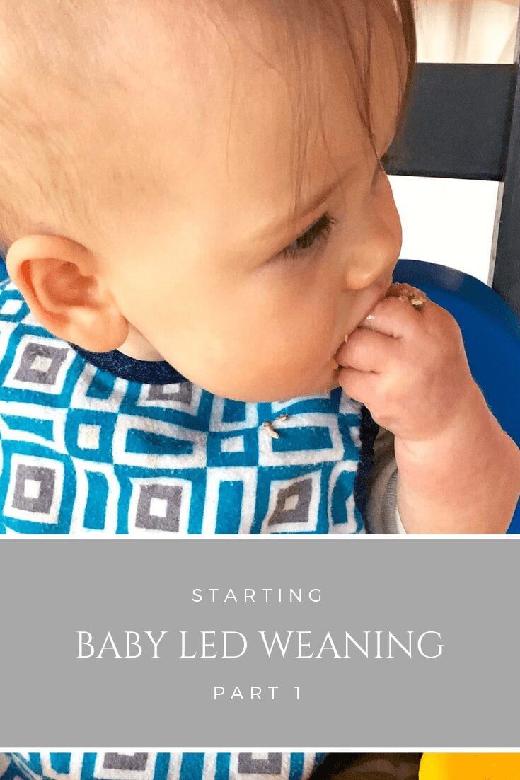starting baby led weaning part 1 (round 4!)