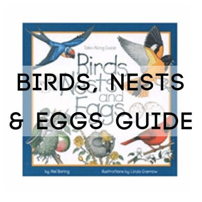 birds, nests & eggs guide