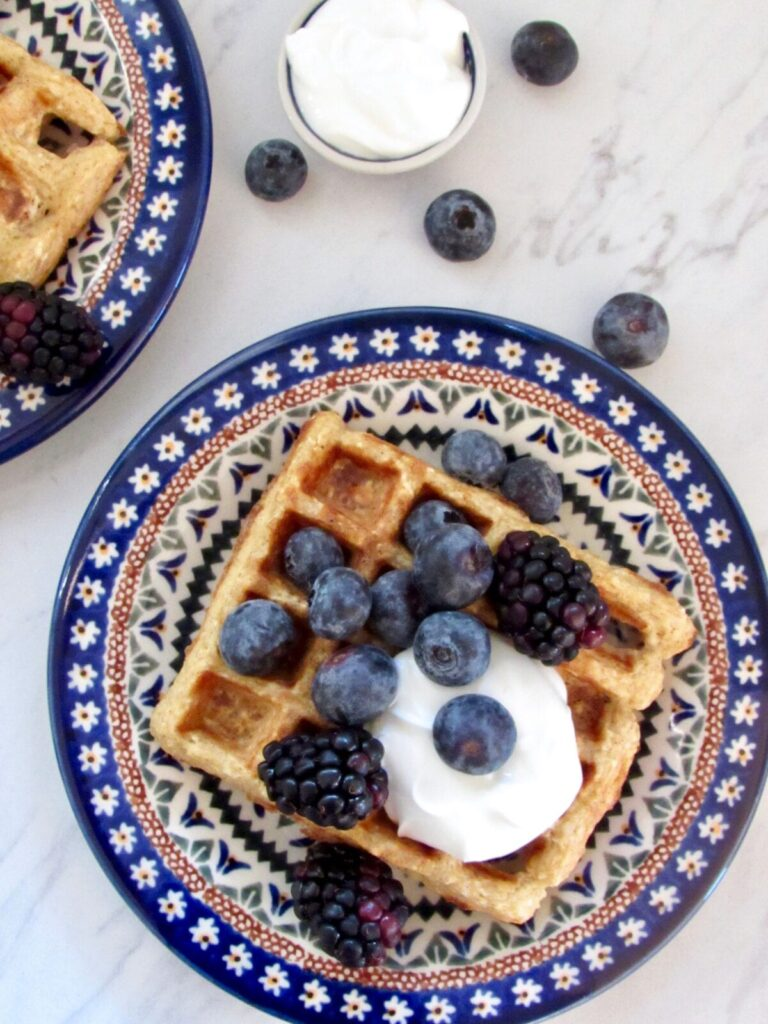 Gluten free freezer protein waffles made in the blender